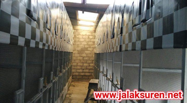 ATM di Kandang Jalak Suren