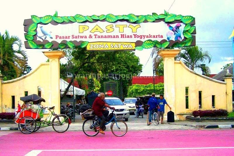 PASTY, Tempat Berkumpul Pencinta Burung Kicau dan Hias Yogyakarta 1