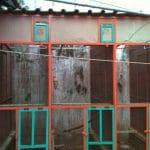 Konstruksi Kandang yang Ideal untuk Penangkaran Burung Jalak Bali