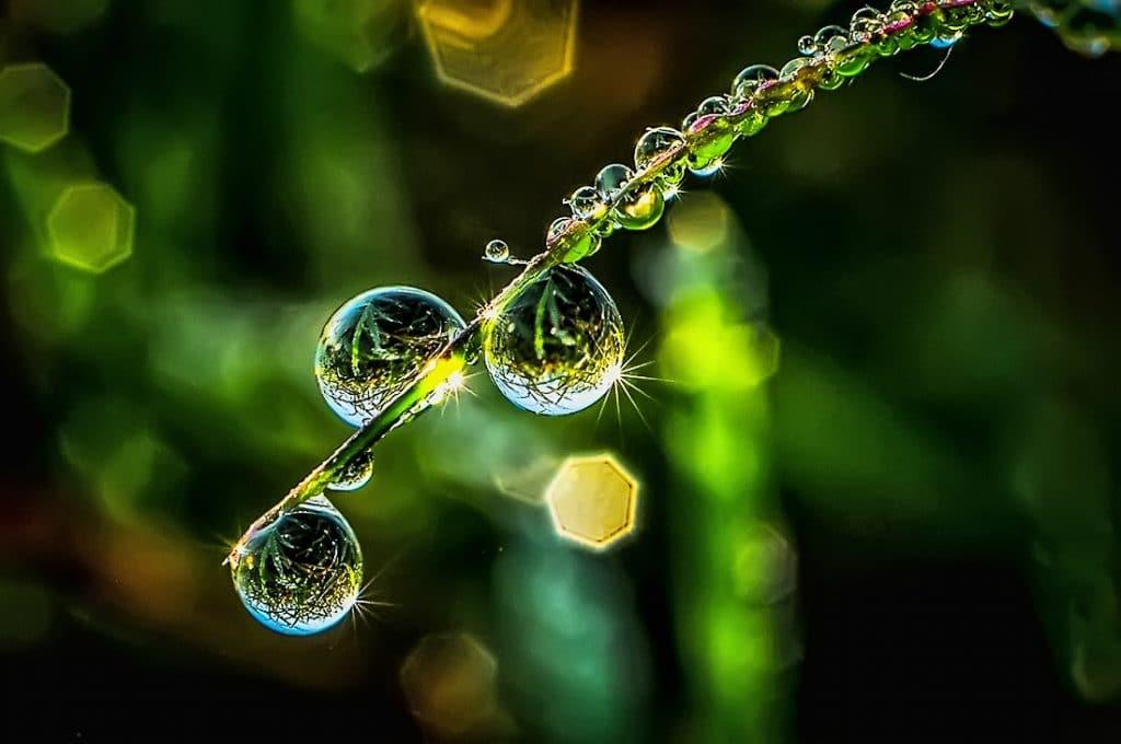 Air Embun